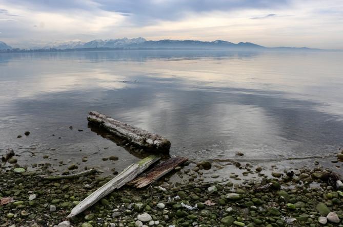 Bodan - Lac de Konstanz - Bregenz